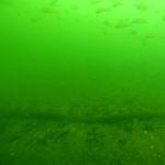 nurkowanie-w-jeziorze-tajemnic-fot6