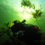 3 Niesamowite ujęcia podwodne J. Olejniczaka
