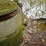 Źródło na Suliborzu oprawione jest w betonową cembrowinę