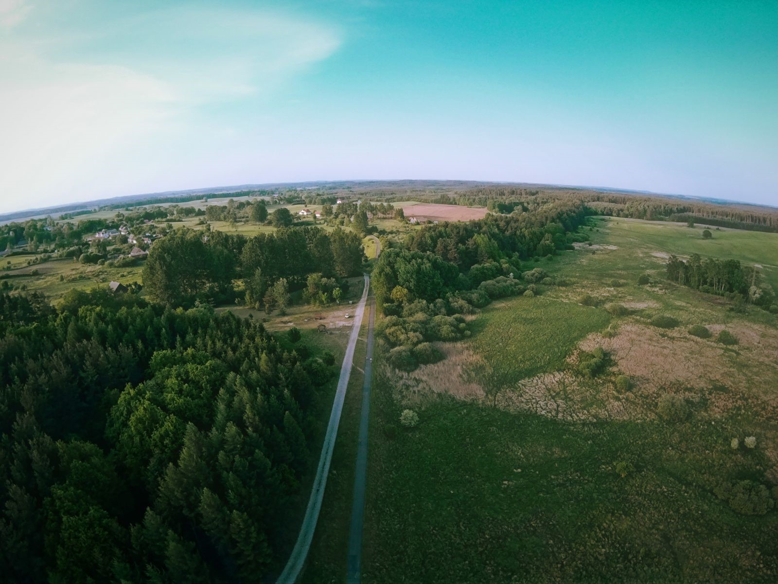 """Widok na nasyp """"Berlinki"""" w okolicach Cieszyna (drzewostan przecinający widoczną ścieżkę rowerową)"""