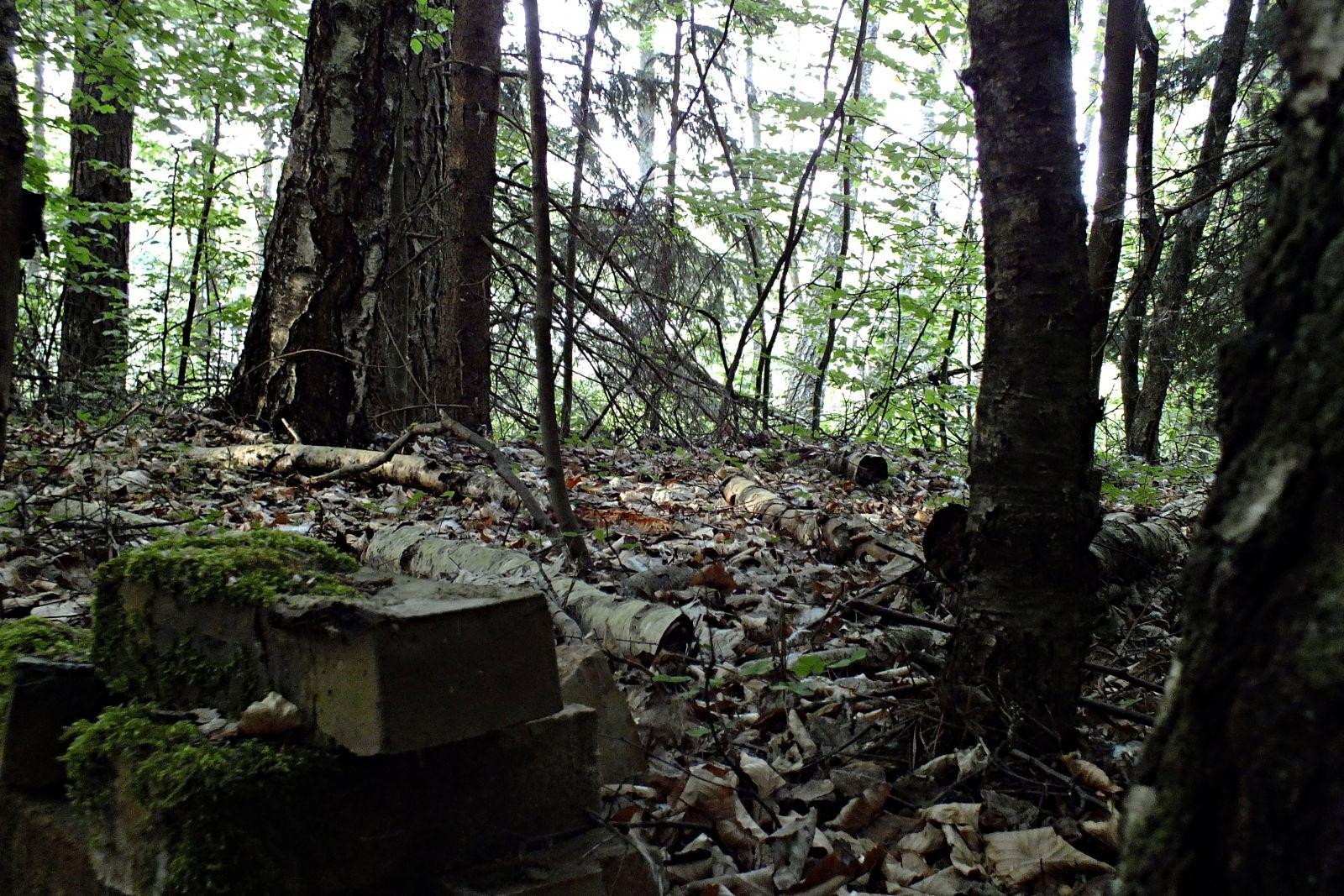 Pozostałości obozu jenieckiego nad Jeziorem Czarnówek I