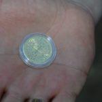 Pamiątkowe monety Sławogrodu