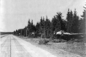Niemiecki-ciężki-myśliwiec-Junkers-Ju-88-zamaskowany-w-pobliżu-DOL-wiosną-1945-r